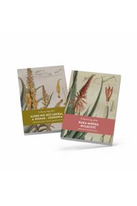 Zestaw 2 książek O. Romano Zago